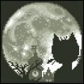 05019 Лунна котка