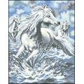 06002 Диви коне