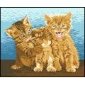 06011 Трите котета