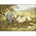 08013 Малката овчарка